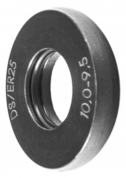 DSER25-jpeg